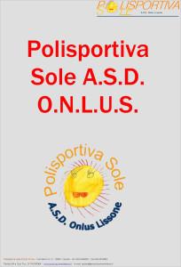 Polisportiva sole - bilancio al 31-08.2013